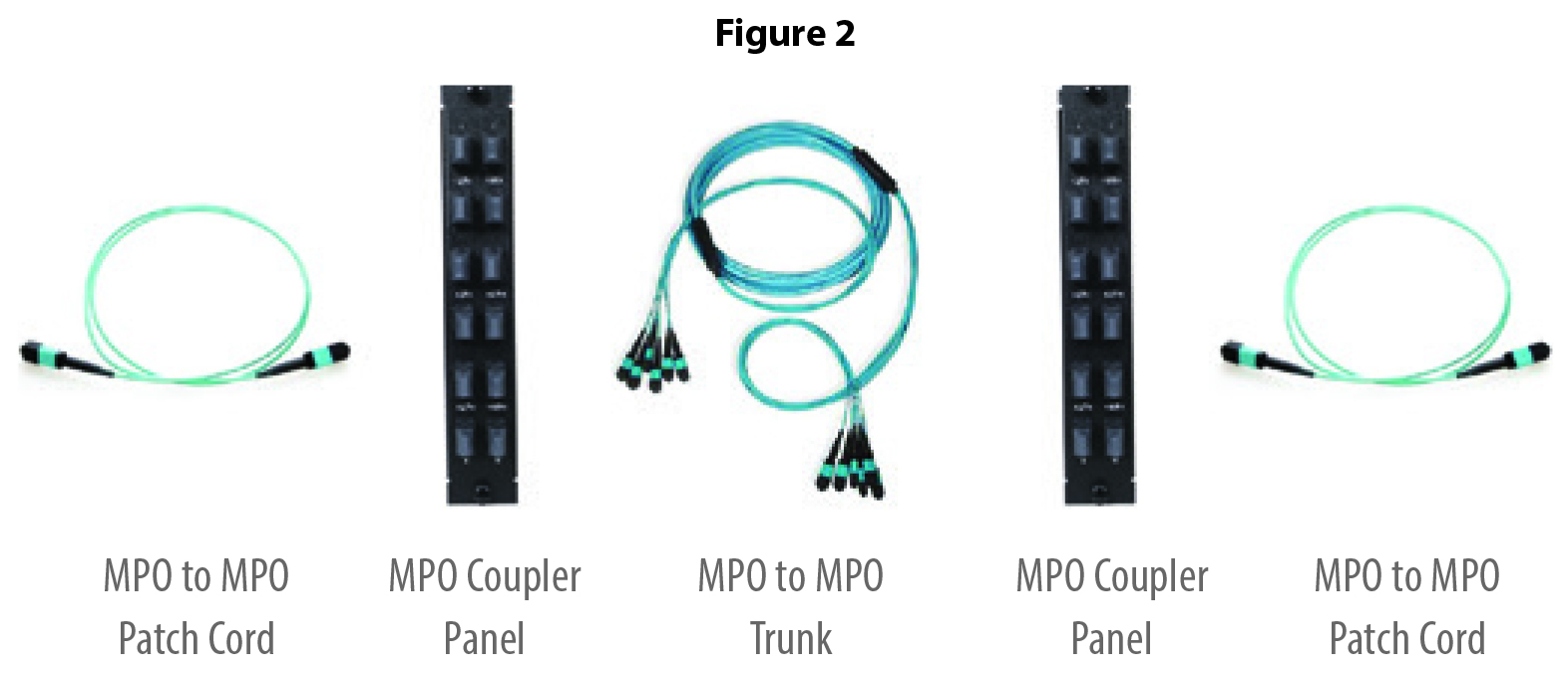 Parallel Link - MPO Cable Connectivity