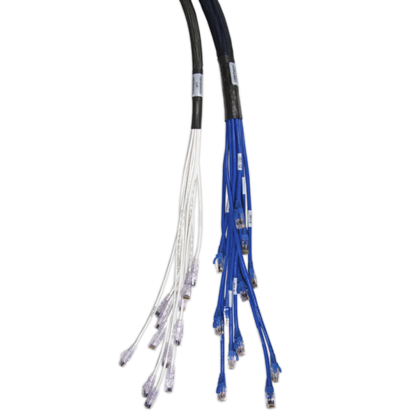 Copper Trunk Cables from CABLExpress